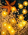 KAKANA Ocean Theme Decorative String Light Small Faint Yellow Shell Battery-operated 10 ft 30 LEDs Warm White Strand Light for Party, Porch, Centerpiece, Fence, Headboard, Bedroom Cozy Decor