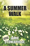 A Summer Walk: Large Print Fiction for Seniors with