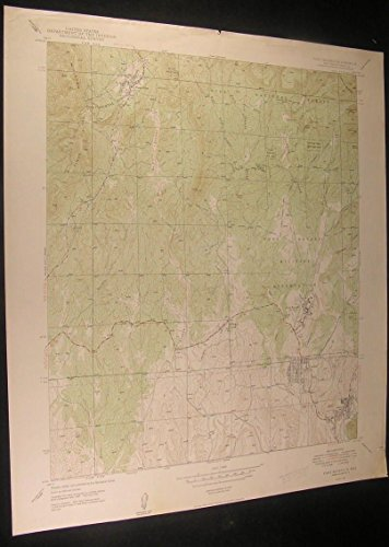 Fort Bayard New Mexico Snake Hill 1949 vintage USGS original Topo chart map -