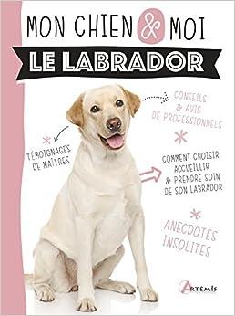 Book's Cover of Le labrador (Français) Broché – 16 août 2018
