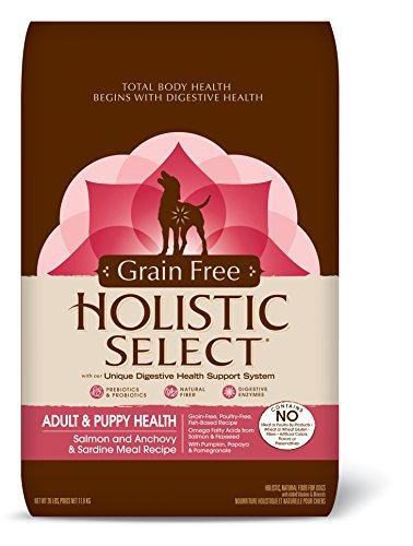 Holistic Select Natural Sardines 26 Pound