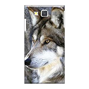 Perfect Hard Phone Cases For Samsung Galaxy A3 With Custom Lifelike The Majestic Beautiful Gray Wolf Skin MarieFrancePitre
