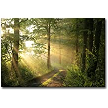 Modern Canvas Painting Wall Art The Picture For Home Decoration Dirt Road Deciduous Forest Green Trees Foggy Morning Spring Landscape Forest Print On Canvas Giclee Artwork For Wall Decor