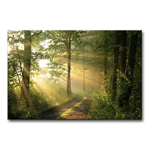Tree Artwork (Modern Canvas Painting Wall Art The Picture For Home Decoration Dirt Road Deciduous Forest Green Trees Foggy Morning Spring Landscape Forest Print On Canvas Giclee Artwork For Wall Decor)