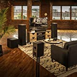 Klipsch R-620F Floorstanding Speaker with Tractrix