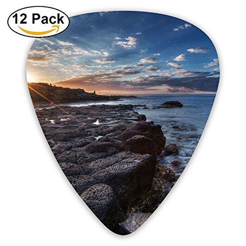 - Tomster Sunset Seaside Rock Standard Guitar Pick 12 Pack, Medium Gauge 73mm
