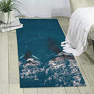 516fqOetsRL._SS300_ Whale Area Rugs & Whale Runners