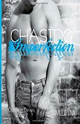 Chasing Imperfection: 2 by Ann, Pamela (2013) Paperback
