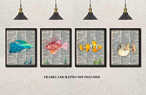 Beta, Blowfish, Lion Fish, Clown Fish Upcycled Dictionary Art - Set of 4 8 x 10 Unframed Prints - Unique Gift for Ocean and Aquarium Lovers - Beach House, Lake House Wall Decor (Fish Dictionary)