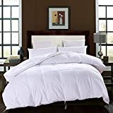 BTWZM 75% Goose Down Comforter, White Duvet Insert Comforter Queen Size, Natural Materials Hypoallergenic ,100% Cotton Fabric,Box Stitching (Queen 88-by-88inch)