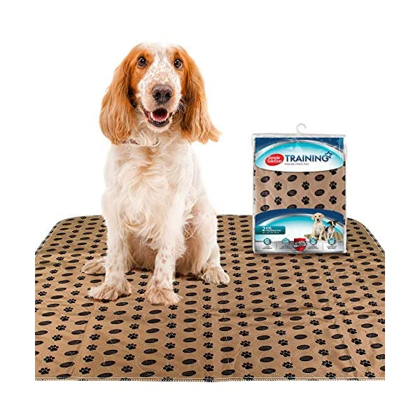 Simple Solution Large Washable Puppy Pad | Reusable Dog Pee Pad | Absorbent and Odor Controlling | 30×32 Inches, 2 Count