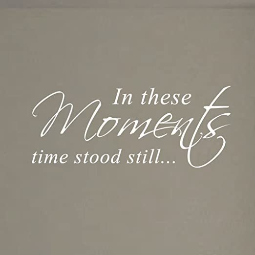 Family Wall Art Quote In These Moments Time Stood Still Vinyl Decal Sticker