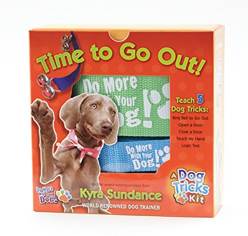 Time to Go Out, A Dog Tricks Kit: Engage, Challenge, and Bond with Your Dog