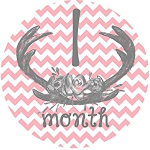 12 Monthly Baby Stickers, Deer Antlers, Flowers, Baby Girl, Baby Belly Stickers, Baby Month Stickers, First Year Stickers Months 1-12, Pink, Grey, Gray, Chevron, Deer Antlers, Girl 5