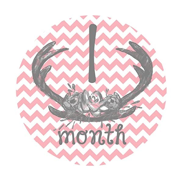 12-Monthly-Baby-Stickers-Deer-Antlers-Flowers-Baby-Girl-Baby-Belly-Stickers-Baby-Month-Stickers-First-Year-Stickers-Months-1-12-Pink-Grey-Gray-Chevron-Deer-Antlers-Girl