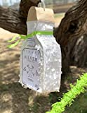 """White Tequila Bottle Pinata with Stick -17.5"""" x"""