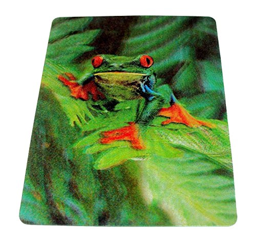 Tree Frog 3D Wildlife Collector's Edition Card - Holographic Lenticular Motion, Includes Frog Facts, Learning Tool, Cheap Stuff For School, Teach Kids About Wildlife.