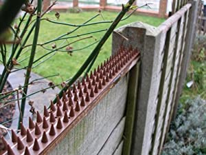 Amazon Com Cat Repeller Fence And Wall Spikes Strip Of