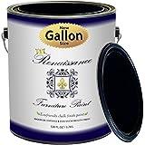 Renaissance Chalk Finish Paint - 1 Gallon - Furniture Paint, Cabinet Paint, Interior Paint, House Paint, Wall Paint - Non Toxic, Eco-Friendly, Superior Coverage - Midnight Black (128oz)