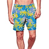 F_Gotal Men's Swimming Trunks Quick Dry Board Shorts Hawaii Printing Swimming Shorts Boxer Briefs Swimwear Bathing Suits