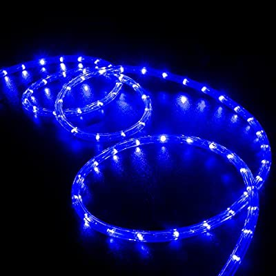 WYZworks Blue LED Rope Lights - Flexible 2 Wire Indoor/Outdoor Accent Holiday Christmas Party Decoration 110V Lighting | UL & CSA Certified