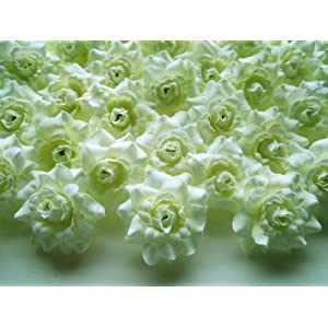 "(100) Silk Nature Roses Flower Head - 1.75"" - Artificial Flowers Heads Fabric Floral Supplies Wholesale Lot for Wedding Flowers Accessories Make Bridal Hair Clips Headbands Dress 79"