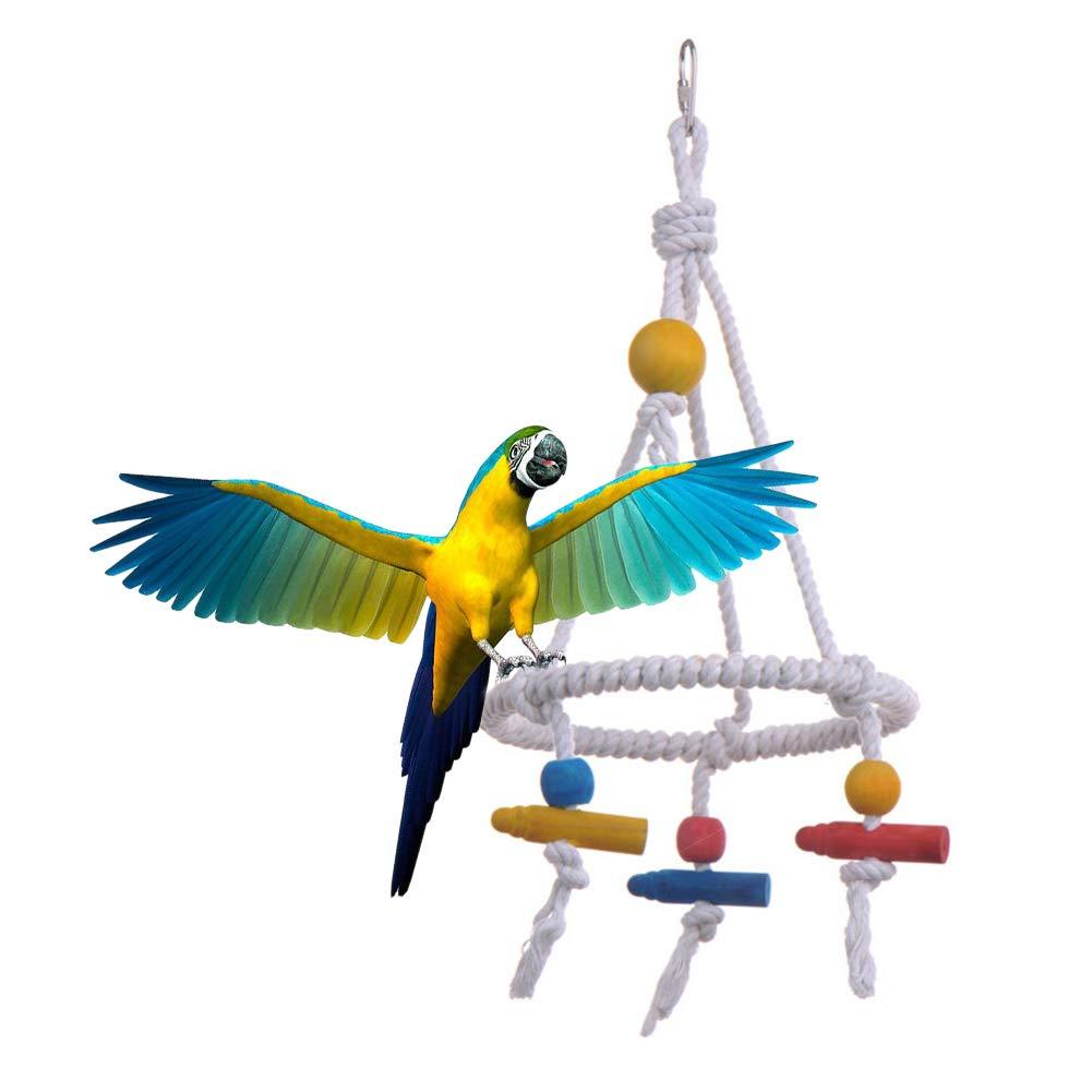 Bbl345dLlo - Juguete de Masticar para pájaro, Loro, Perca, Perca ...