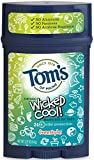 Tom's of Maine Aluminum-Free Natural Wicked Cool