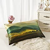 ALASKA BEAR - Natural Silk Pillowcase, Hypoallergenic, 19 momme, 600 thread count 100 percent Mulberry Silk, King Size with hidden zipper (1, Giant Mountains)