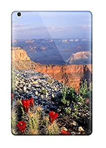High Quality CaseyKBrown Grand Canyon Skin Case Cover Specially Designed For Ipad - Mini/mini 2