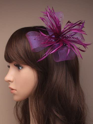 Looped  Swirl Net and Feather Hair Fascinator in Deep purple