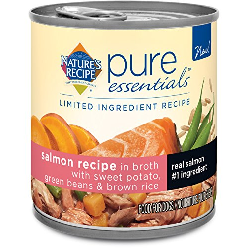 Nature's Recipe Pure Essentials Salmon Wet Dog Food in Broth, 10-Ounce, 24-Pack