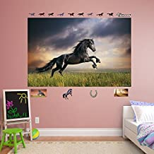 Fathead Stormy Skies Horse  -  Real Big Mural Decal