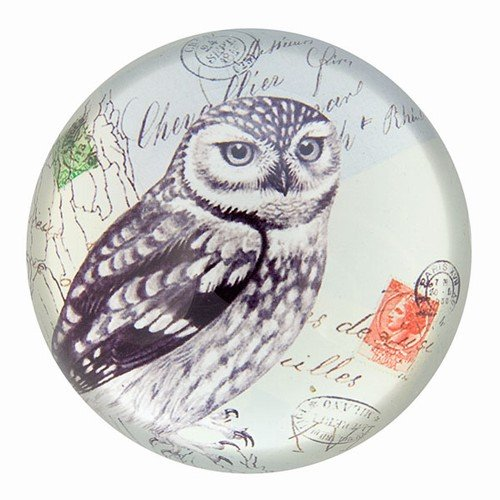 Nature Under Glass Paperweights (American Owl)