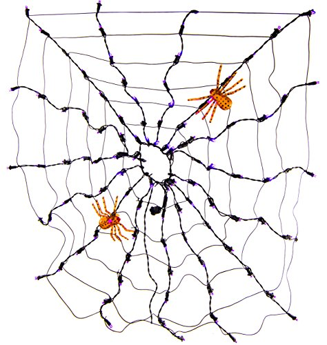 Queens of Christmas S-100SPWB-4NB Spider Web LED Net Light, 4', Purple/Orange]()