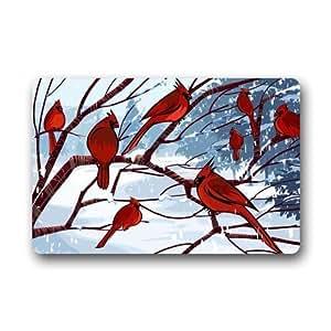 Funny Rojo Pájaro cardenal arte, cute diseño de pájaros tela no tejida Top personalizado Felpudo, para interior/exterior Felpudo (23,6x 39,88cm)