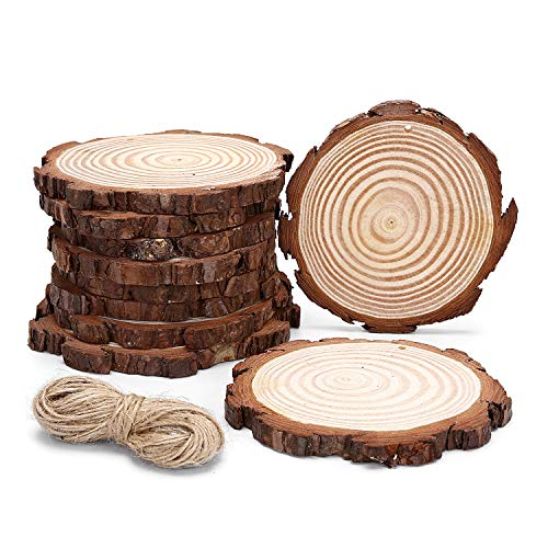 10pcs Hanging Natural Wood Slices Round Unfinished for centerpieces with Holes bark for Christmas Decorations Ornaments Unfinished Wood Woodcrafts DIY Crafts L-10pcs -