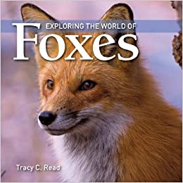 Exploring The World Of Foxes Read Tracy 9781554076161 Amazon Com Books