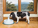PetSafe Drinkwell 360 Pet Fountain