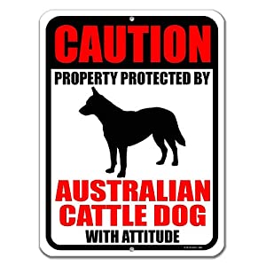 Honey Dew Gifts No Trespassing Signs, Caution Property Protected by Australian Cattle Dog with Attitude 9 inch by 12 inch Metal Aluminum Dog Sign, Made in USA 4