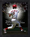 "Johnny Bench Cincinnati Reds ProQuotes Photo (Size: 9"" x 11"") Framed"