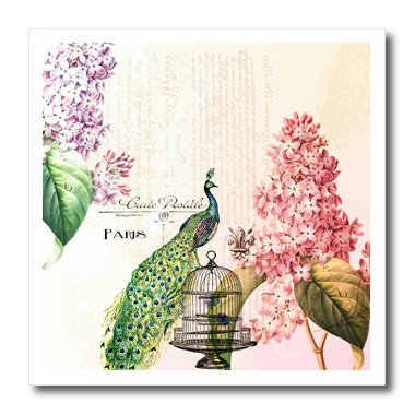 3dRose ht_110312_3 Paris Peacock with Hydrangea Flowers-Iron on Heat Transfer for Material, 10 by 10-Inch, (Paris Hydrangea)