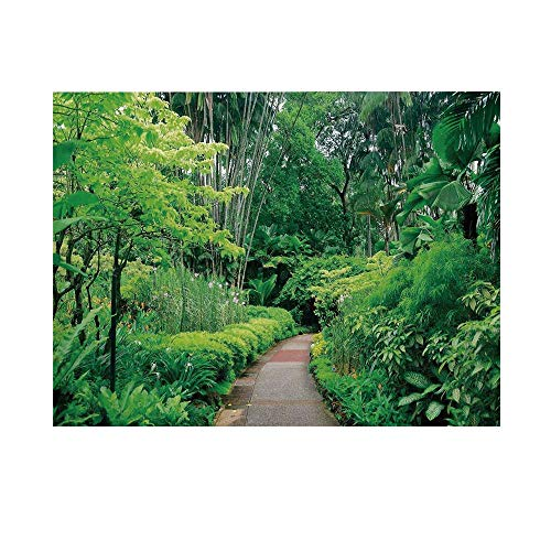 Forest Photography Background,Green Plants Trees in Singapore Asia Botanic Gardens Walkway Travel Destination Arboretum Backdrop for Studio,7x5ft