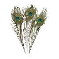 KAYSO Real Natural Plumas de pavo real, paquete de 100