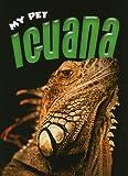 Iguana, Elizabeth Simon, 1616900776