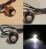Firewatermarine White LED Boat Drain Plug Light