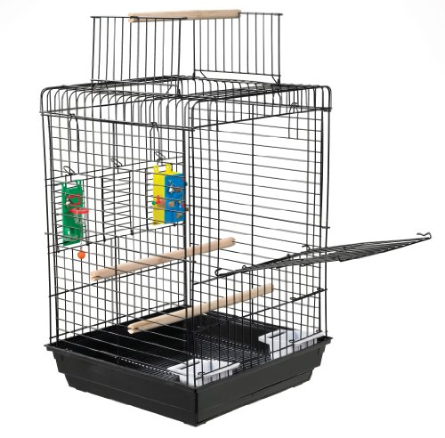 Kaytee SP80150 Play n Learn Cage for Cockatiels