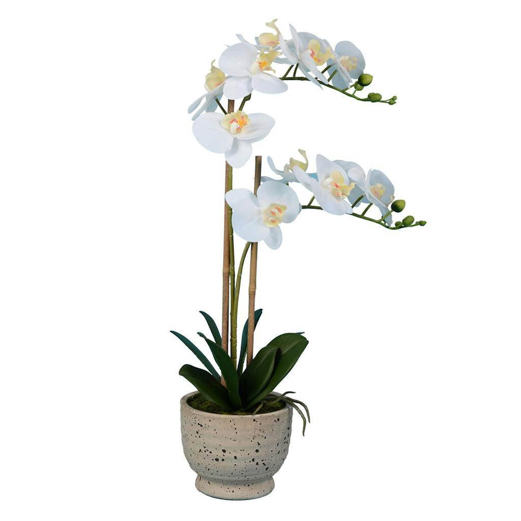Vickerman FN180802 White Orchid Everyday Floral