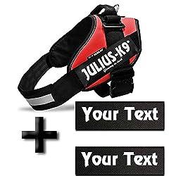 Canicaprice Harnais Julius K9 Power IDC Rouge + 2 étiquettes à Personnaliser (T1 (Poitrail : 65-85cm))