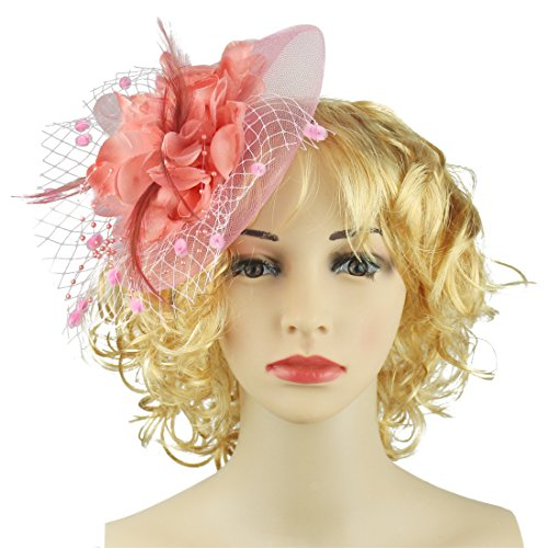 HOLDOOR Fascinator Feather Fascinators for Women Pillbox Hat Flower Feather  Headband for Wedding Party Prom Tea 37cef42480d3